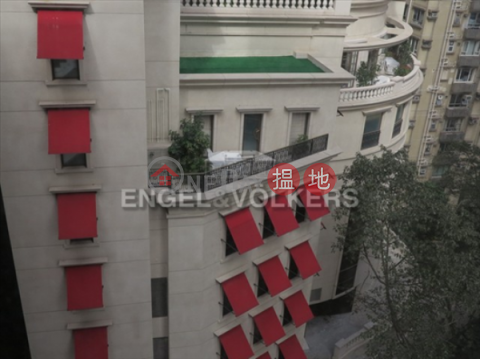 2 Bedroom Flat for Sale in Mid Levels West|3 Chico Terrace(3 Chico Terrace)Sales Listings (EVHK23981)_0