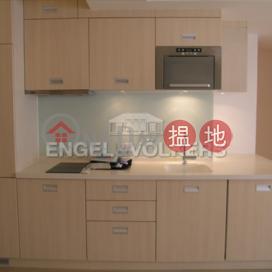 2 Bedroom Flat for Rent in Mid Levels West Robinson Mansion(Robinson Mansion)Rental Listings (EVHK86865)_3