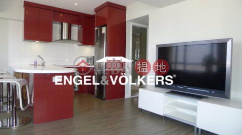 2 Bedroom Flat for Rent in Mid Levels West|Vantage Park(Vantage Park)Rental Listings (EVHK100857)_0