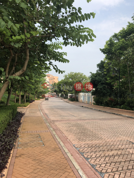 Discovery Bay, Phase 11 Siena One, House 41 (Discovery Bay, Phase 11 Siena One, House 41) Discovery Bay|搵地(OneDay)(3)