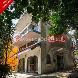籚鬚城4房豪宅筍盤出售|住宅單位|籚鬚城村(Lo So Shing Village)出售樓盤 (EVHK87705)_0