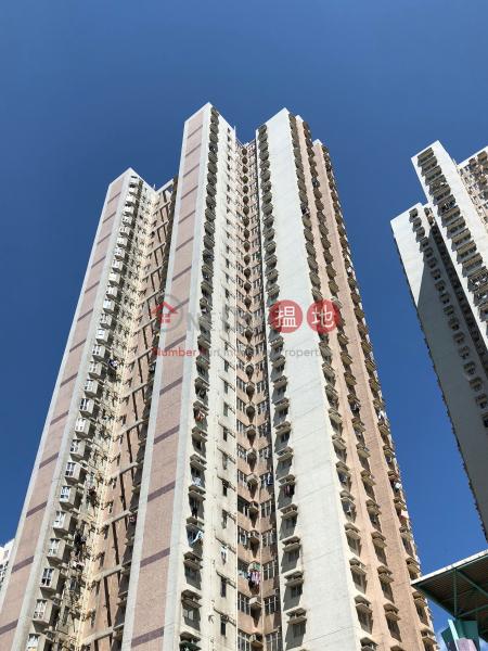 Block 4 Lok Hin Terrace (Block 4 Lok Hin Terrace) Chai Wan|搵地(OneDay)(1)
