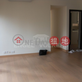 3 Bedroom Family Flat for Rent in Sai Ying Pun|The Babington(The Babington)Rental Listings (EVHK36808)_0