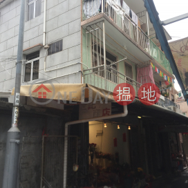 Property on Tak Lung Front Street|德隆前街物業