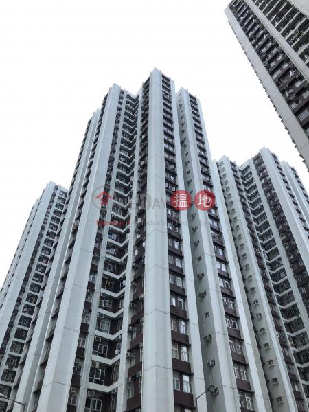 (T-48) Hoi Sing Mansion On Sing Fai Terrace Taikoo Shing ((T-48) Hoi Sing Mansion On Sing Fai Terrace Taikoo Shing) Tai Koo|搵地(OneDay)(1)