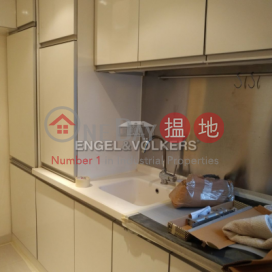 1 Bed Flat for Sale in Pok Fu Lam|Western DistrictCNT Bisney(CNT Bisney)Sales Listings (EVHK41392)_0