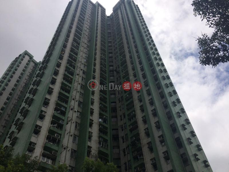 康柏苑 松柏閣 (A座) (Hong Pak Court, Chung Pak House(Block A)) 藍田 搵地(OneDay)(3)