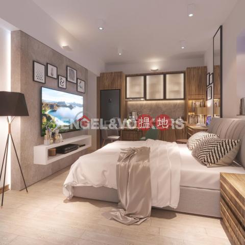 2 Bedroom Flat for Sale in Mid Levels West 45 Seymour Road(45 Seymour Road)Sales Listings (EVHK84692)_0