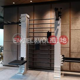 1 Bed Flat for Rent in Sai Ying Pun
