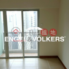 Sheung Wan 2 Bedrooms in Tung Tze Terrace|Tung Tze Terrace(Tung Tze Terrace)Rental Listings (MIDLE-EVHK39128)_3
