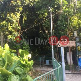 Yung Shue Long Old Village|榕樹塱舊村