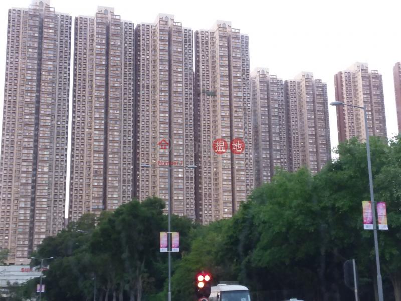 蝴蝶邨 蝶意樓 (Butterfly Estate - Tip Yee House) 屯門|搵地(OneDay)(1)