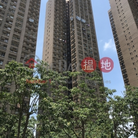 Wang Fuk Court Block B Wang Tao House|宏福苑 宏道閣B座