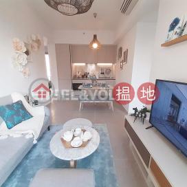2 Bedroom Flat for Rent in Sai Ying Pun|Western DistrictResiglow(Resiglow)Rental Listings (EVHK92726)_0