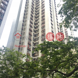 (T-10) Nan Shan Mansion Kao Shan Terrace Taikoo Shing|南山閣 (10座)