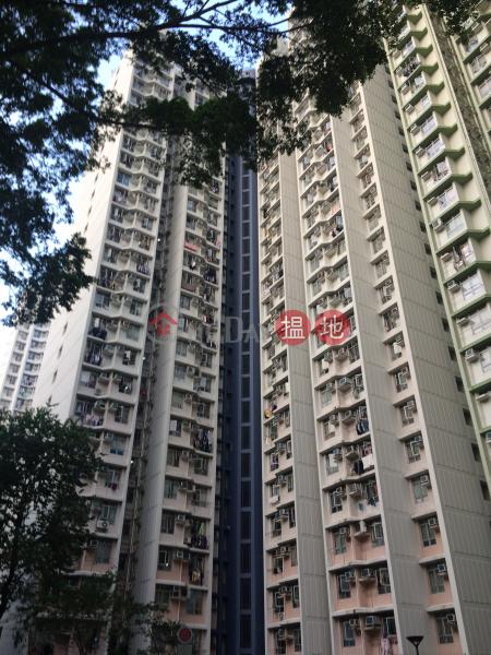 Lei Muk Shue Estate Chung Shue House (Lei Muk Shue Estate Chung Shue House) Tai Wo Hau|搵地(OneDay)(1)