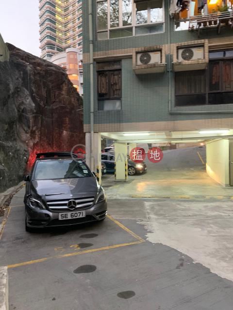 Braemar Hill Ultra Spacious carpark, Alphard MPV access Oxford Court(Oxford Court)Rental Listings (HAZEH-7867937607)_0