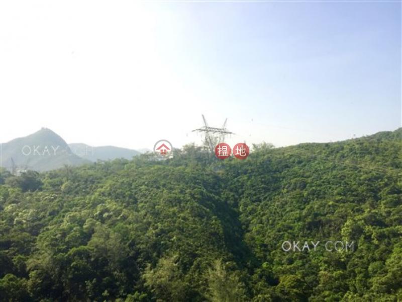 2房2廁,星級會所,可養寵物,連車位《陽明山莊 山景園出售單位》-88大潭水塘道 | 南區-香港出售HK$ 3,200萬