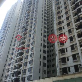 Shatin Plaza Brilliant Tower (Block B)|沙田廣場銀星閣(B座)