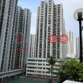(T-11) Po Shan Mansion Kao Shan Terrace Taikoo Shing|寶山閣 (11座)