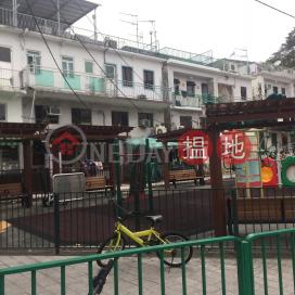 Tan Cheung Ha Village|頓場下村