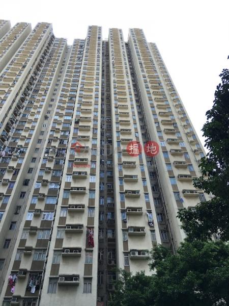 Tai Po Plaza Block 1 Yee Fu Court (Tai Po Plaza Block 1 Yee Fu Court) Tai Po 搵地(OneDay)(1)