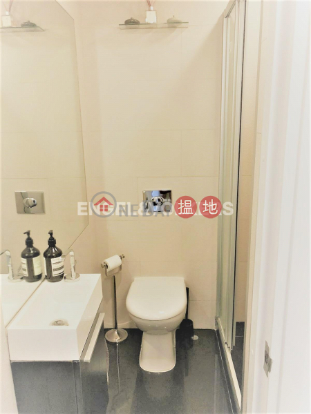 2 Bedroom Flat for Sale in Mid Levels West | Robinson Heights 樂信臺 Sales Listings