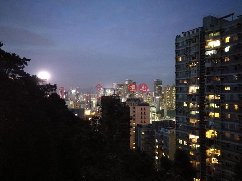 嘉苑|未知|住宅-出租樓盤|HK$ 60,000/ 月