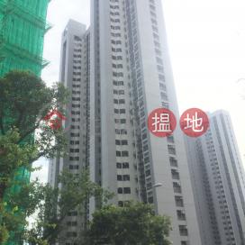 嘉雲臺 5座,渣甸山, 香港島