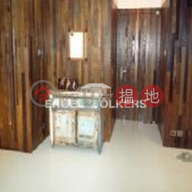 Studio Flat for Rent in Leighton Hill|Wan Chai DistrictH & S Building(H & S Building)Rental Listings (EVHK39773)_0