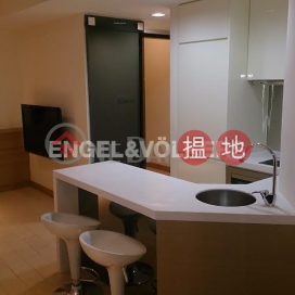 1 Bed Flat for Rent in Mid Levels West Western DistrictThe Icon(The Icon)Rental Listings (EVHK85820)_0