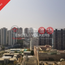 Studio Apartment/Flat for Sale in Wong Chuk Hang