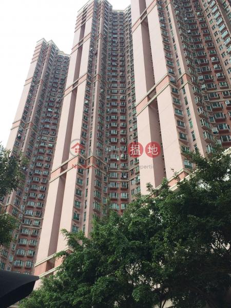 愉景新城1期3座 (Discovery Park Phase 1 Block 3) 荃灣西|搵地(OneDay)(1)