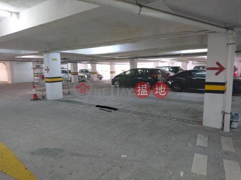 Golden Lion Garden Phase 2 Parking Spot|Sha TinGolden Lion Garden Phrase 2 Golden Wealth Court (Block A)(Golden Lion Garden Phrase 2 Golden Wealth Court (Block A))Sales Listings (STAN0-8797816287)_0