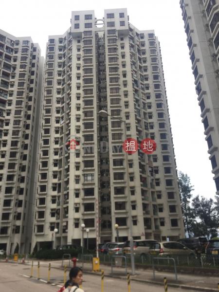 杏花邨42座 (Heng Fa Chuen Block 42) 杏花村|搵地(OneDay)(1)