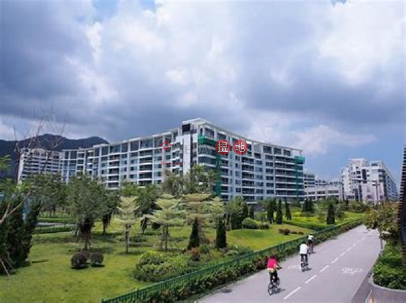 4 Bedroom Luxury Flat for Sale in Science Park | Providence Bay Phase 3 The Graces House 8 天賦海灣三期 海鑽 洋房8 Sales Listings