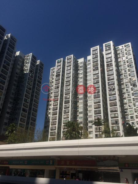 Lucky Plaza Chung Lam Court (Block B1) (Lucky Plaza Chung Lam Court (Block B1)) Sha Tin|搵地(OneDay)(1)