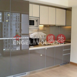 1 Bed Flat for Sale in Sai Ying Pun|Western DistrictIsland Crest Tower1(Island Crest Tower1)Sales Listings (EVHK26824)_0