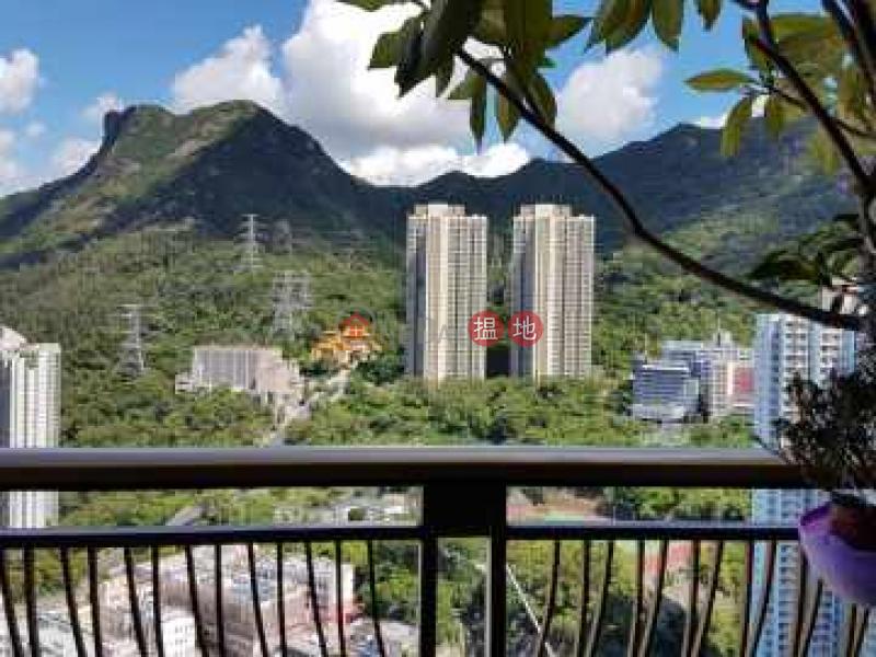 罕有極高層開揚 獅子山全景 遠眺維港中銀-99蒲崗村道   黃大仙區 香港 出售HK$ 778萬