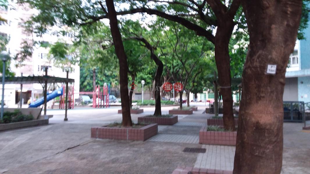 白田邨翠田樓 (Tsui Tin House, Pak Tin Estate) 石硤尾|搵地(OneDay)(2)