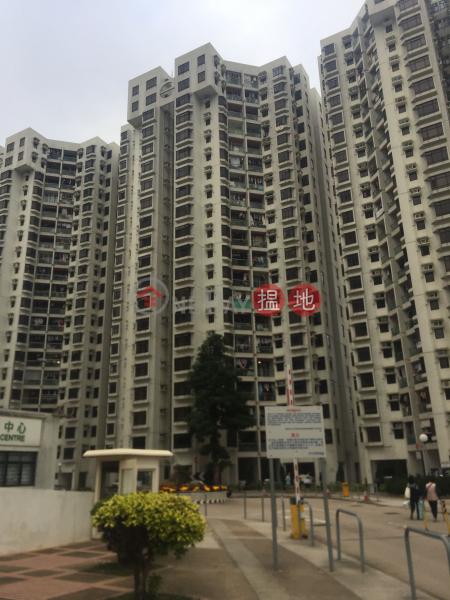杏花邨41座 (Heng Fa Chuen Block 41) 杏花村|搵地(OneDay)(1)