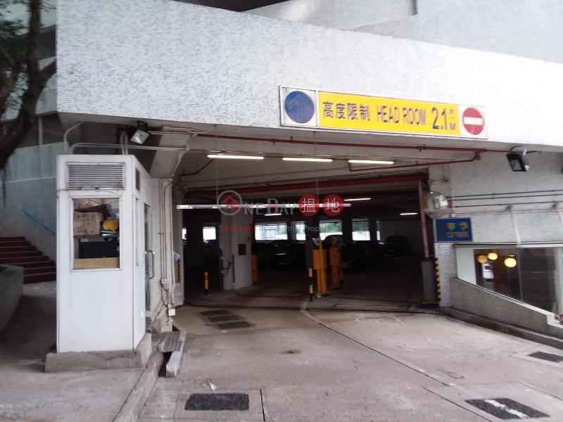 Hong Kong Garden Multi-Storey Car Park (Behind Block 25-28) (Hong Kong Garden Multi-Storey Car Park (Behind Block 25-28)) Sham Tseng|搵地(OneDay)(3)