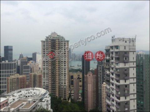 Spacious apartment for rent in Mid-Levels East|Carnation Court(Carnation Court)Rental Listings (A001431)_0