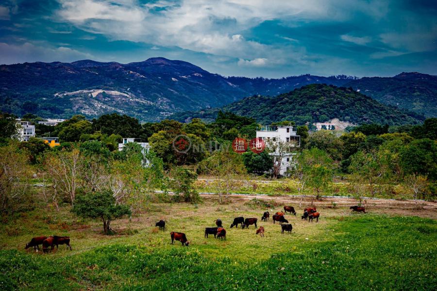 鹿地塘村屋 (Luk Tei Tong Village House) 梅窩|搵地(OneDay)(4)