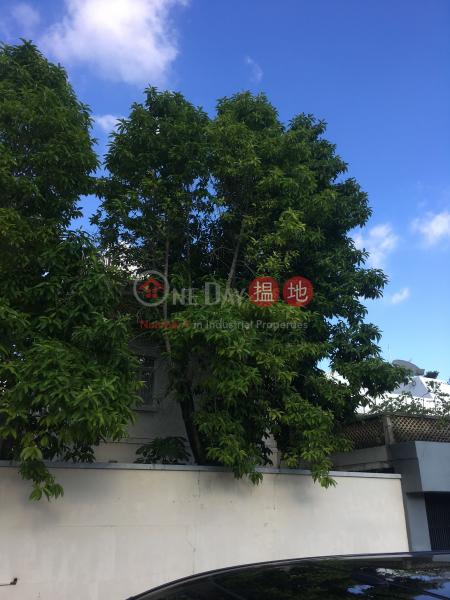 4 CUMBERLAND ROAD (4 CUMBERLAND ROAD) Kowloon Tong 搵地(OneDay)(3)