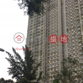 Ma On Shan Centre Block 1|馬鞍山中心1座