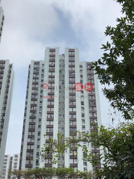 衛星閣 (49座) ((T-49) Wai Sing Mansion On Sing Fai Terrace Taikoo Shing) 太古 搵地(OneDay)(1)