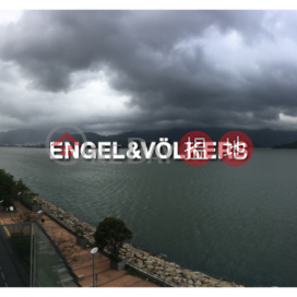 2 Bedroom Flat for Rent in Science Park|Tai Po DistrictProvidence Bay Phase 1 Tower 12(Providence Bay Phase 1 Tower 12)Rental Listings (EVHK43445)_0