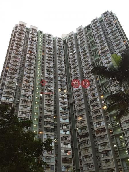 頌雅苑 頌善閣B座 (Chung Sin Court Block B Chung Chun House) 大埔 搵地(OneDay)(1)