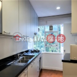 Studio Flat for Sale in Central Mid Levels|Century Tower 1(Century Tower 1)Sales Listings (EVHK43393)_3